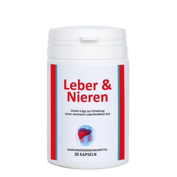 Leber & Nieren